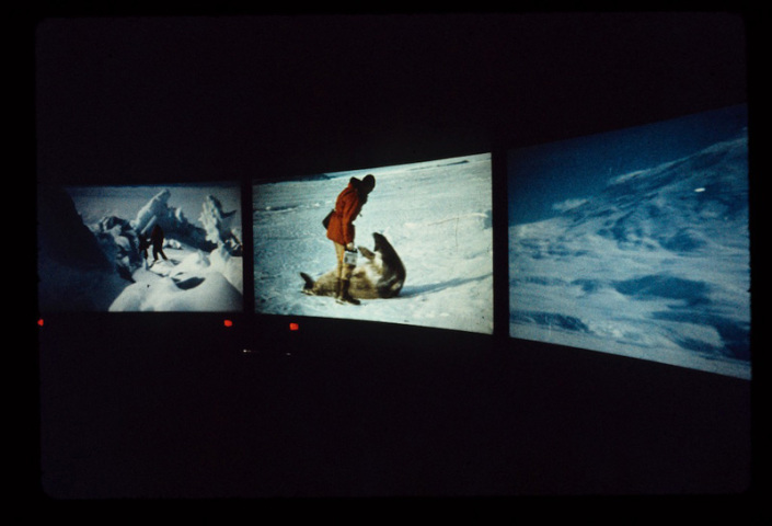 Polar Life screening